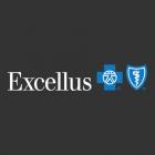 https://jordanbommelje.com/wp-content/uploads/2020/01/excellus-logo-140x140.png
